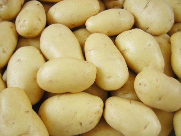 Люкс: описание семенного сорта картофеля, характеристики, агротехника