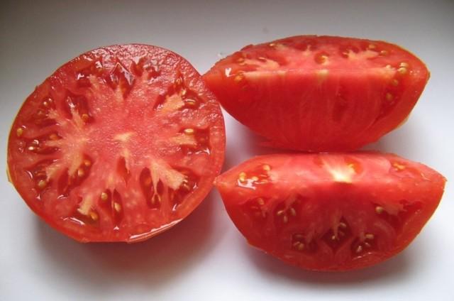 О томате Гордость Сибири: описание сорта, характеристики помидоров, посев